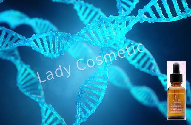 ヴァイナス美容液ヒト幹細胞培養液エキス効果