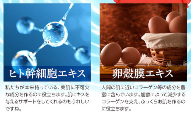 幹細胞エキスと卵殻膜エキス